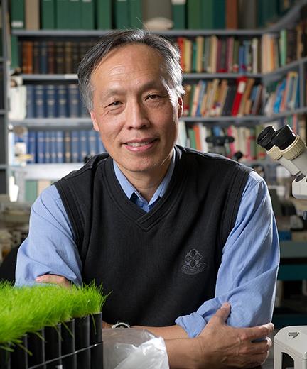 Dr. Tom Hsiang